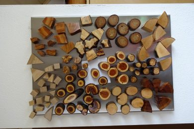 Holzmagnete für Magnetwand